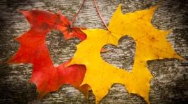Autumn Heart Desktop Wallpaper HD