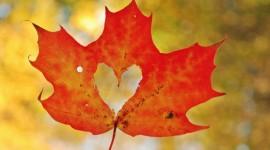 Autumn Heart Wallpaper For Desktop