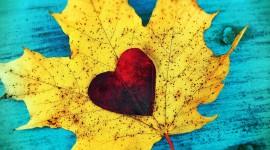 Autumn Heart Wallpaper Free
