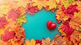 Autumn Heart Wallpaper Full HD