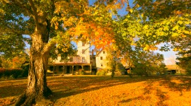 Autumn In The Village Photo Free