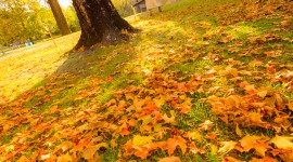 Autumn In The Village Wallpaper For Android#3