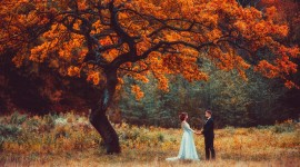 Autumn Love Story Photo