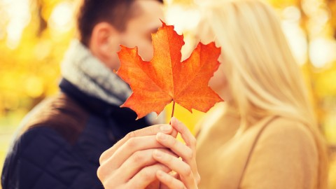 Autumn Love Story wallpapers high quality