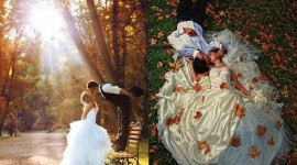 Autumn Wedding Photo Free
