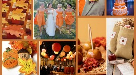 Autumn Wedding Wallpaper
