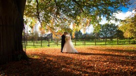 Autumn Wedding Wallpaper Download