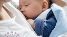Breastfeeding Wallpaper For Desktop
