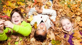 Children Playing In Autumn Leaves Photo Free