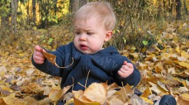 Children Playing In Autumn Leaves Photo#1
