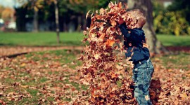 Children Playing In Autumn Leaves Pics