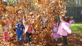 Children Playing In Autumn Leaves Pics#2