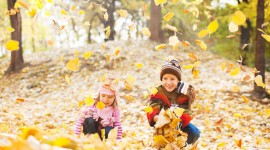 Children Playing In Autumn Leaves Wallpaper Full HD
