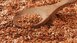 Flax Seeds Wallpaper High Definition