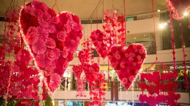 Heart Decorations Photo