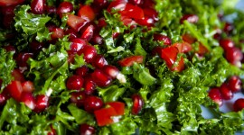 Salad With Pomegranate Wallpaper For Mobile