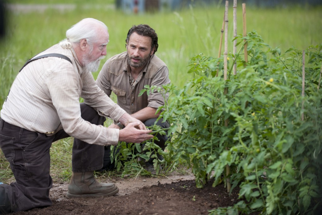 Scott Wilson wallpapers HD