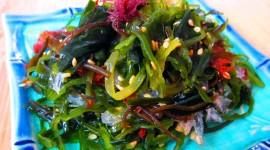 Seaweed Salad Photo