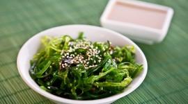 Seaweed Salad Wallpaper