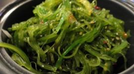 Seaweed Salad Wallpaper Full HD