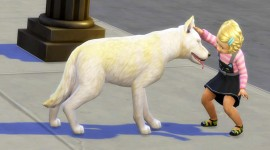 Sims 4 Cats & Dogs Photo