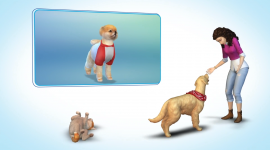 Sims 4 Cats & Dogs Wallpaper Download