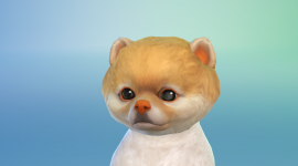 Sims 4 Cats & Dogs Wallpaper For Desktop