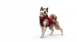 Sims 4 Cats & Dogs Wallpaper For PC