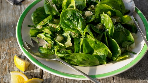 Spinach Salad wallpapers high quality