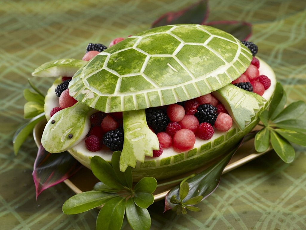 Turtle Salad wallpapers HD
