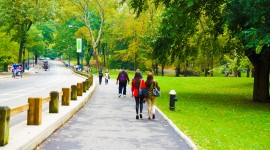 Walking In The Park Photo Download