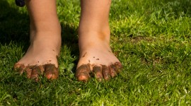 Barefoot On Grass Photo Free
