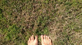 Barefoot On Grass Wallpaper For PC