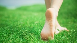 Barefoot On Grass Wallpaper Free