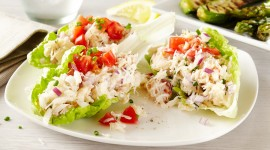 Crab Salad Wallpaper HQ