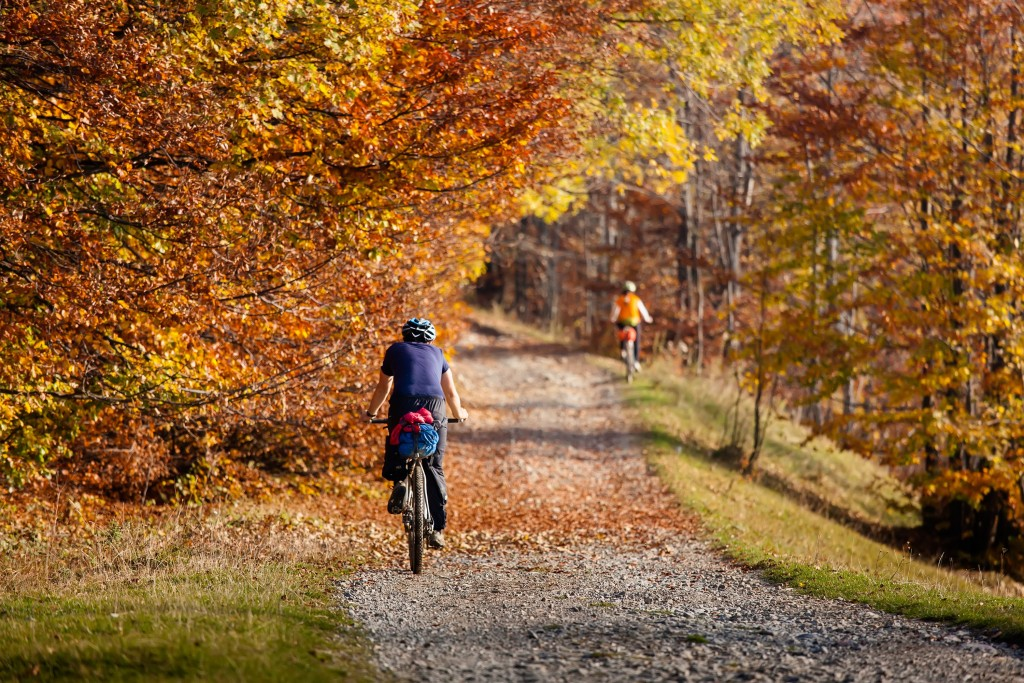 Cycling In Autumn wallpapers HD