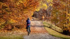 Cycling In Autumn Desktop Wallpaper