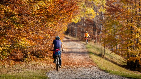 Cycling In Autumn wallpapers high quality