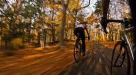 Cycling In Autumn Desktop Wallpaper For PC