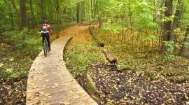 Cycling In Autumn High Quality Wallpaper