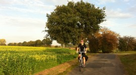Cycling In Autumn Wallpaper