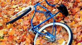 Cycling In Autumn Wallpaper For PC