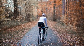 Cycling In Autumn Wallpaper Free