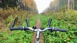 Cycling In Autumn Wallpaper Full HD