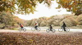 Cycling In Autumn Wallpaper Gallery