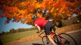 Cycling In Autumn Wallpaper HD