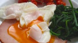 Poached Egg Wallpaper 1080p