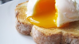 Poached Egg Wallpaper High Definition