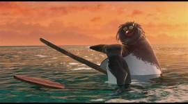 Surf's Up Image Download