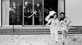 The Graduate 1967 Photo
